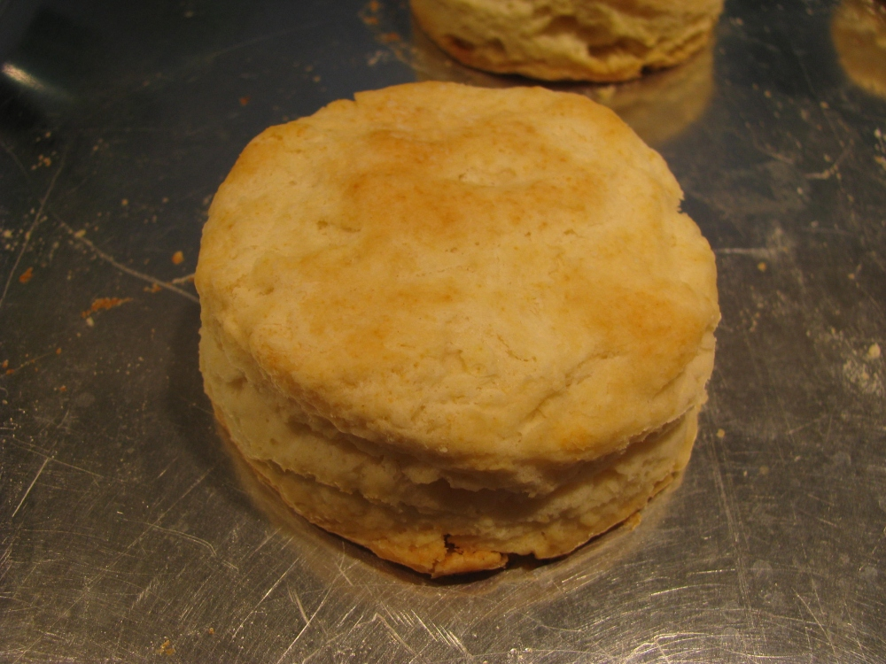 Southern Biscuit!